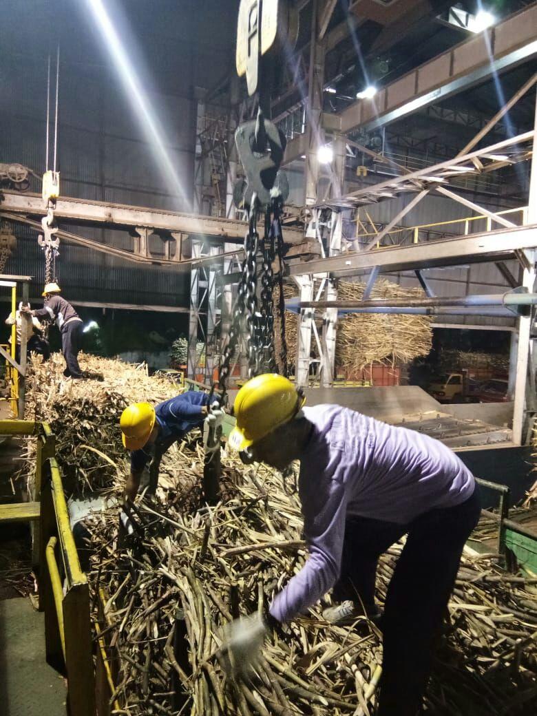 Petugas Unloading menyiapkan tebu dari atas truk dimasukkan ke Stasiun Gilingan